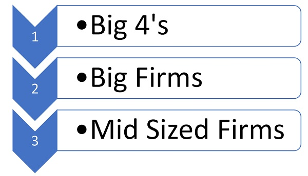 Big CA Firms